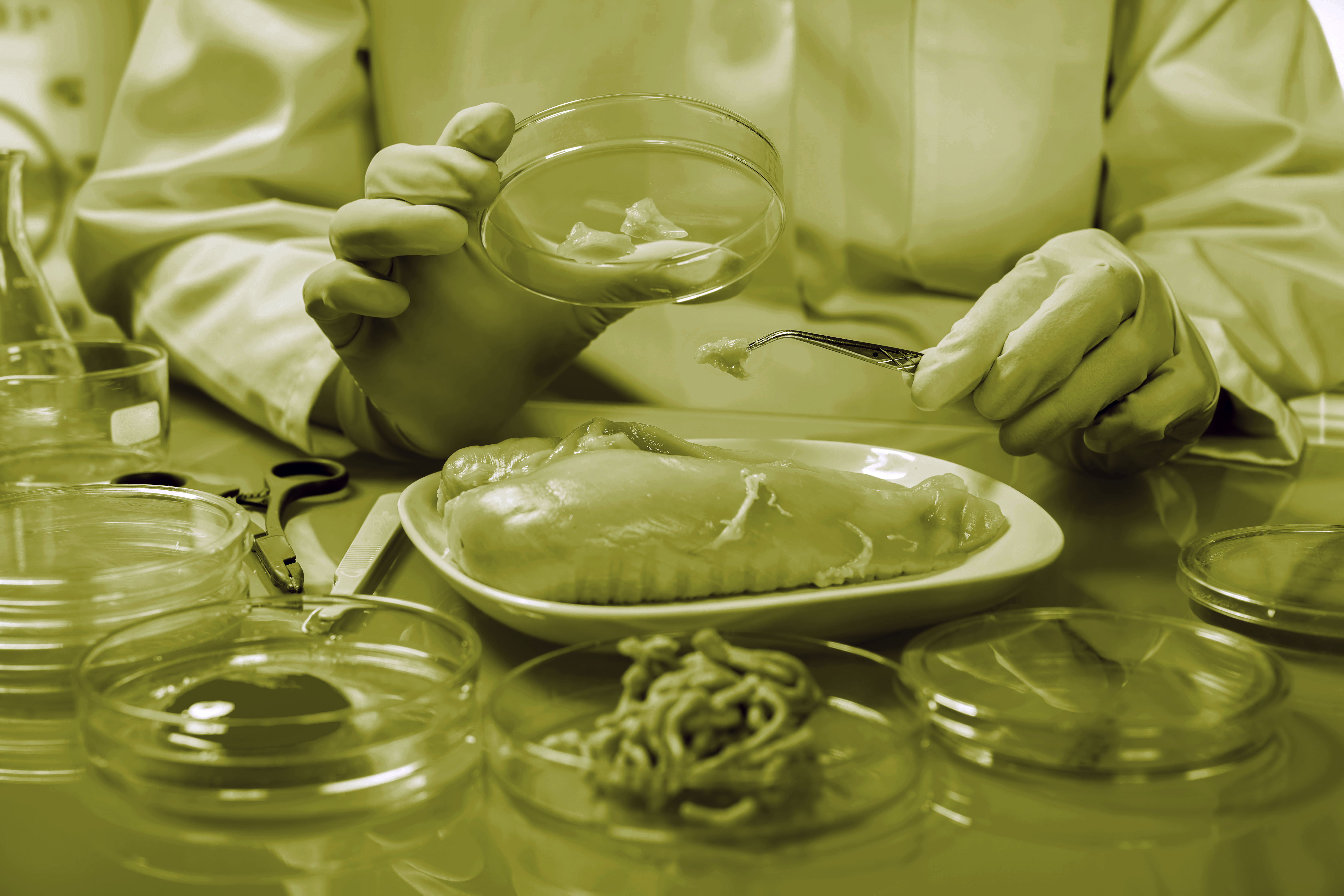 Food safety after brexit. Scientist examining food.